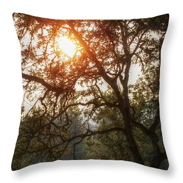 Through The Trees Throw Pillow by Melanie Lankford Photography