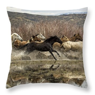 Through The Water II Throw Pillow