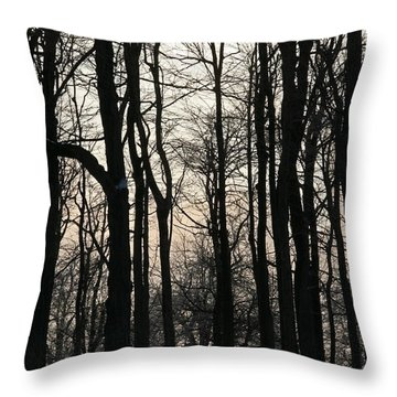 Through The Winter Trees Throw Pillow by Heather Allen