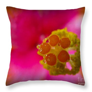 Through Time And Space Throw Pillow