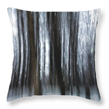 Throw Pillow featuring the photograph Through The Woods by Steven Huszar