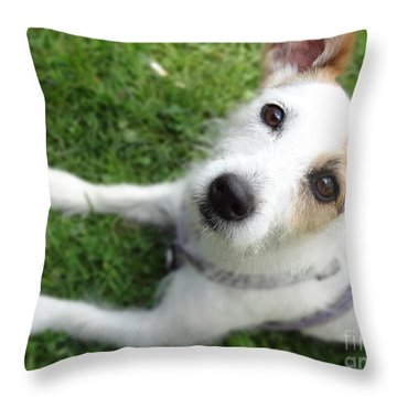 Throw It Again Throw Pillow