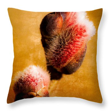 Thrust Of New Life Throw Pillow