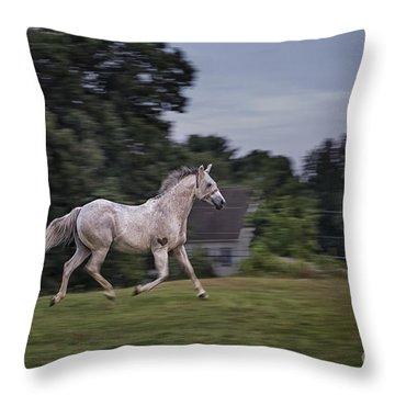 Thundersoul Throw Pillow by Evelina Kremsdorf