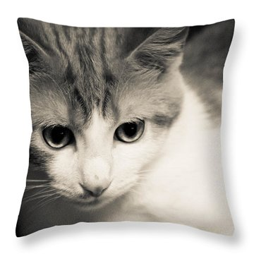 Tibbet 5 Throw Pillow by Nick Kirby