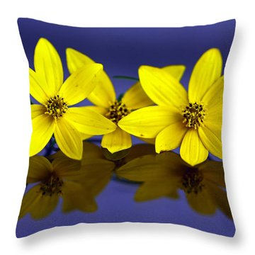 Throw Pillow featuring the photograph Tickseed Trio by Suzanne Stout