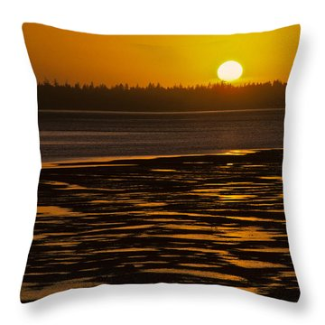 Throw Pillow featuring the photograph Tidal Pattern At Sunset by Jeff Goulden