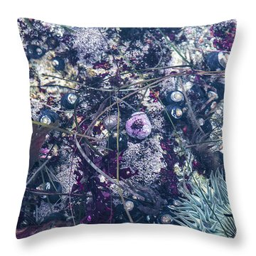 Tidal Pool Assortment Throw Pillow