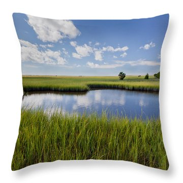 Tidal Pool Image Art Throw Pillow