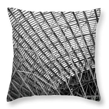 Tidbinbilla Deep Space Station Throw Pillow by Steven Ralser