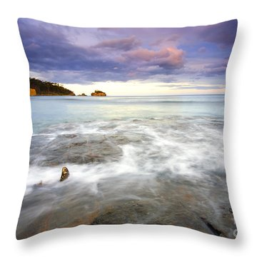 Tide Covered Pavement Throw Pillow by Mike  Dawson