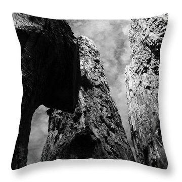 Throw Pillow featuring the photograph Tide Poles by Tarey Potter