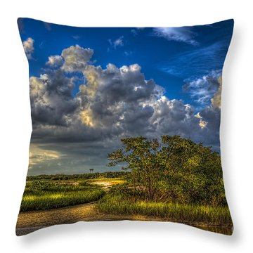 Tide Water Throw Pillow by Marvin Spates