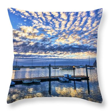 Tidelands Park Reflections Throw Pillow
