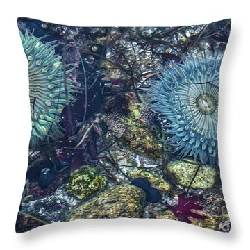 Throw Pillow featuring the mixed media Tidepool Abundance by Terry Rowe