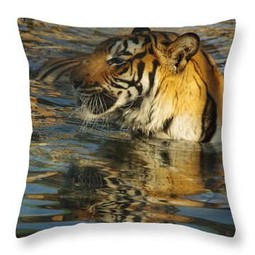 Tiger 3 Throw Pillow
