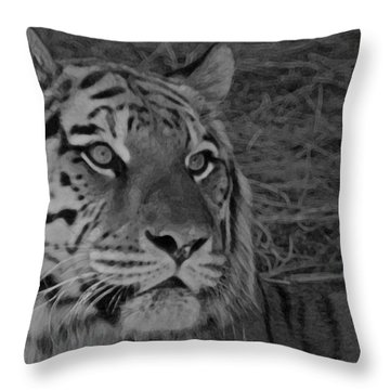Tiger Bw Throw Pillow by Ernie Echols