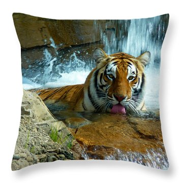 Tiger Cool Aid Throw Pillow