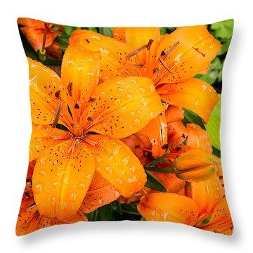 Tiger Lily After Morning Rain Throw Pillow