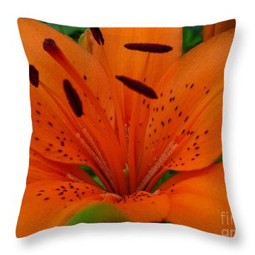 Throw Pillow featuring the photograph Tiger Lily by Bianca Nadeau