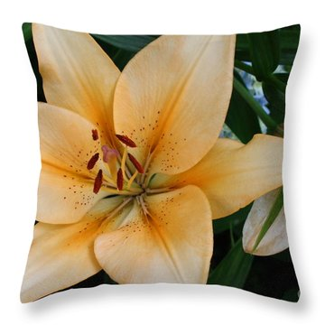 Throw Pillow featuring the photograph Tiger Lily by Dora Sofia Caputo Photographic Art and Design