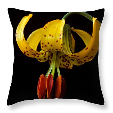 Tiger Lily Throw Pillow by Jeff Goulden