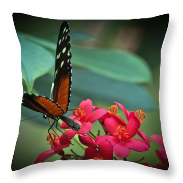 Tiger Longwing Butterfly Throw Pillow by Joann Copeland-Paul