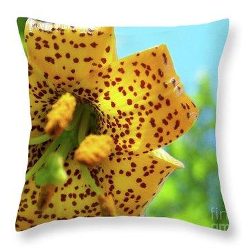 Tiger 'n' Sky Throw Pillow