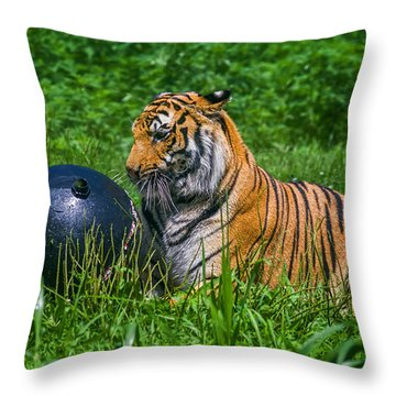 Tiger Playing With Ball Throw Pillow