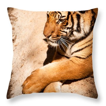 Tiger Resting Throw Pillow