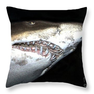 Tiger Shark Throw Pillow by Sergey Lukashin