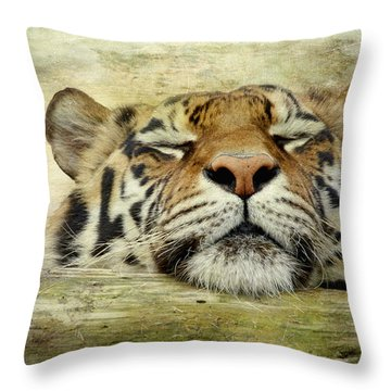 Tiger Snooze Throw Pillow