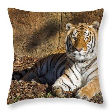 Tiger Throw Pillow by Steven Ralser