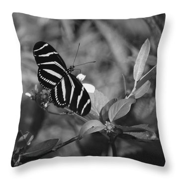 Tiger Stripe Butterfly Throw Pillow