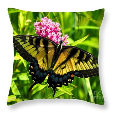 Tiger Swallotail Throw Pillow
