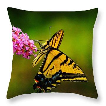 Tiger Swallowtail Butterfly Throw Pillow by Karen Slagle