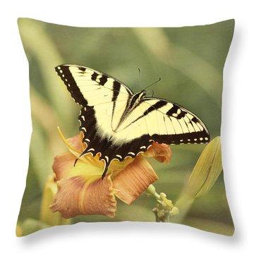 Tiger Swallowtail Throw Pillow by Kim Hojnacki