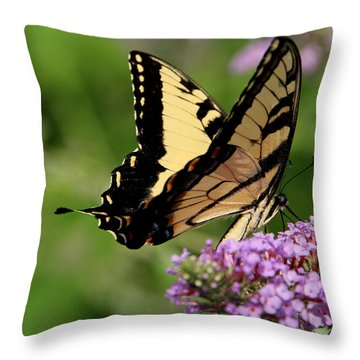 Tiger Swallowtail On Butterfly Bush 2 - Featured In 'comfortable Art' And 'flower W Co' Macro Groups Throw Pillow by EricaMaxine  Price