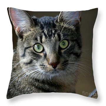 Tiger2 Throw Pillow