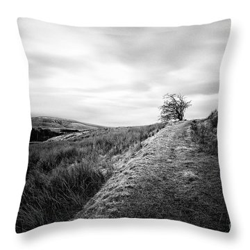 Till The World Stops Turning Throw Pillow by John Farnan