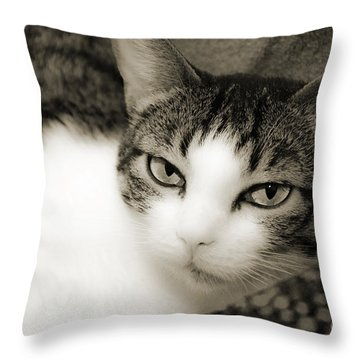 Tilly Little Miss Attitude Throw Pillow by Andee Design