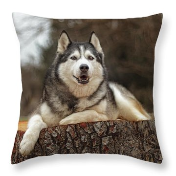 Timber Throw Pillow by Brian Cross