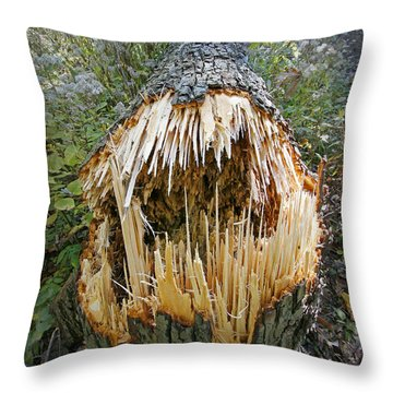 Timber Teeth Throw Pillow by Martin Konopacki