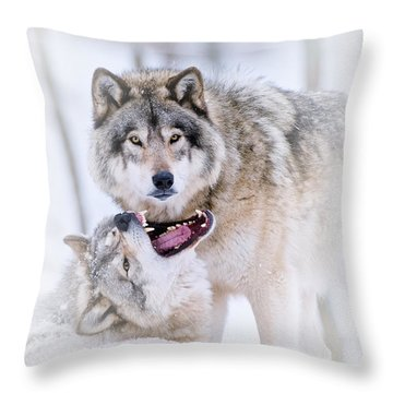 Timber Wolf Pictures 56 Throw Pillow