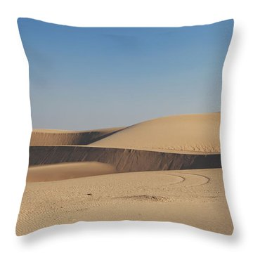 Time Changes Things Throw Pillow
