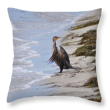 Time For A Bath Throw Pillow by Bill Cannon