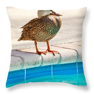 Time For A Dip II Throw Pillow
