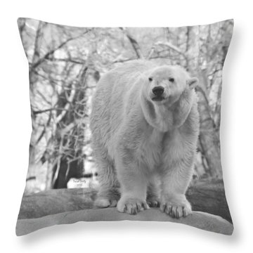 Time For A Dip Throw Pillow by Trish Tritz