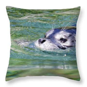 Time For A Swim Throw Pillow