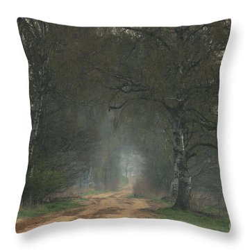 Time For Good Shoes In The Nature Throw Pillow